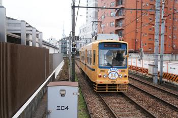DSC05537.JPG